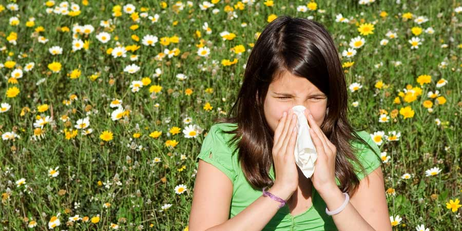 Allergies vs. Colds